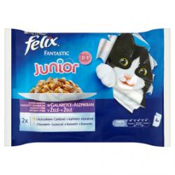 Felix Fantastic teljes...